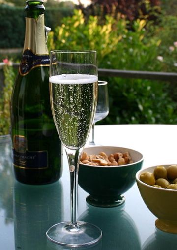 424px-Champagne_flute_and_bottle